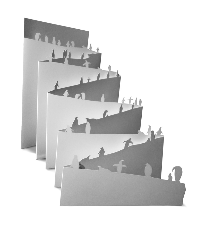 Pinguinkarte Julia Böttle Mediengestaltung